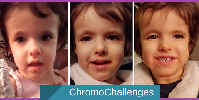 ChromoChallenges Jess Plummer Corn Safe  Oct 26 Dec 3 Dec 22 Of 2019