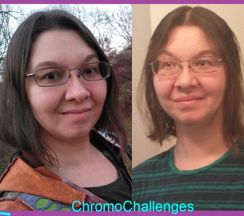 ChromoChallenges Jess Plummer LowPoo Update Pic 2